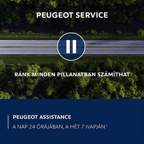 Peugeot 21. századi szolgáltatások
