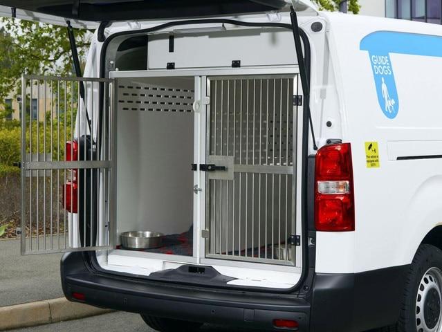 Peugeot kutyaszállító