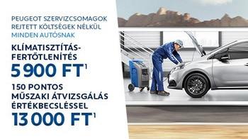 Peugeot tavaszi szervizakció